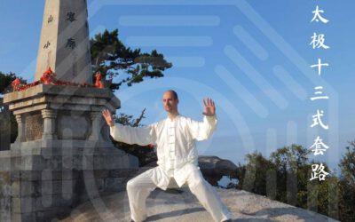 Die Taiji 13er des Drachentor Taiji (Herkunft, Hintergründe, Methoden und Ziele) am 24.03.21