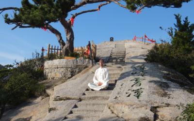 4. Ausbildung in der Basisstufe des Neidan (Qi) Gong der daoistischen Drachentorschule (ab 01-2022)